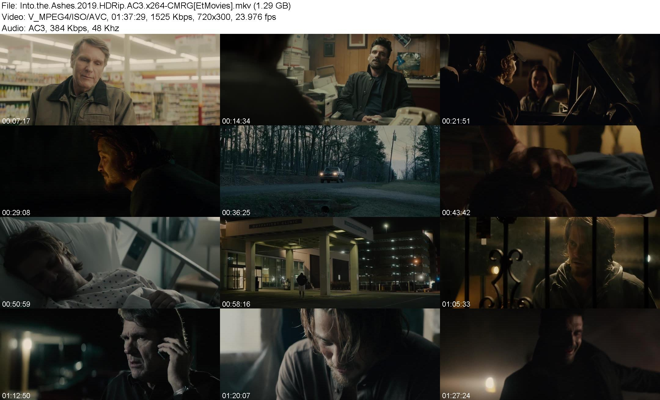 Download [RG/NF] Into the Ashes (2019) HDRip AC3 x264-CMRG